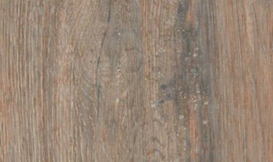 Plank-Bg111